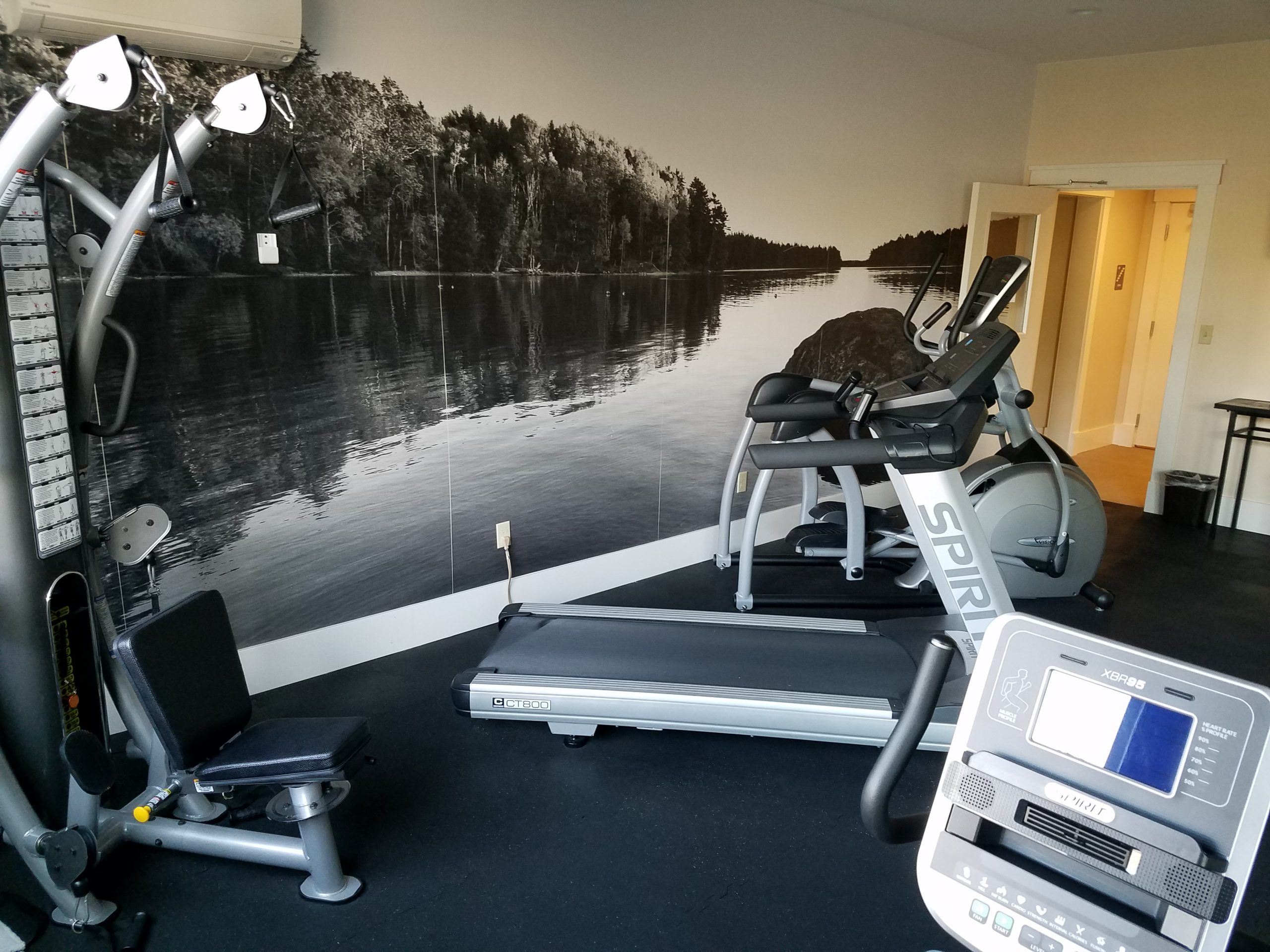 Workout room includes a wall mural and multiple fitness machines